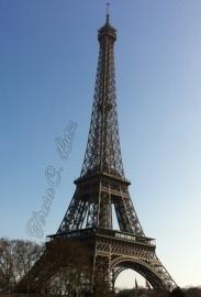 eiffel tower TLC