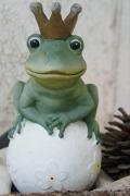 frog-prince-398828_640