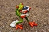 work frog-1339892_640