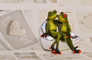 frogs-1280491_640