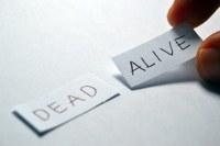 Dead or Alive written on paper